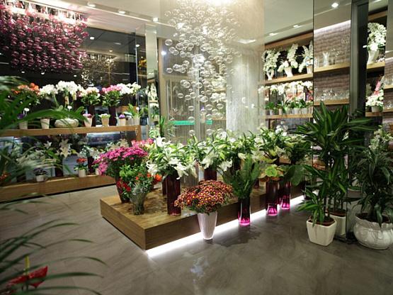 снова книжный магазин для флористов в москве праздничного